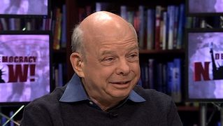 Wallace shawn3