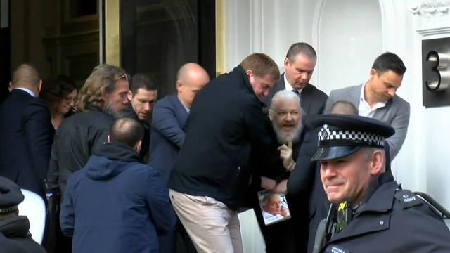 Seg assange arrest