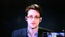 Snowdenwebexbutton