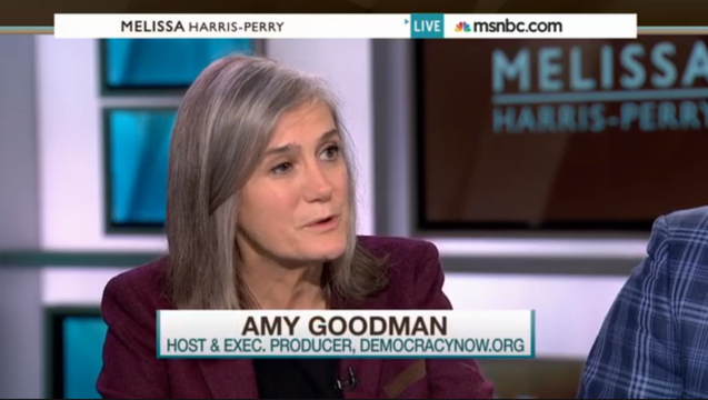 Amy goodman mhp may30