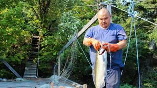 Salmonfishing1