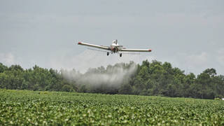 Seg3 pesticide spraying 3