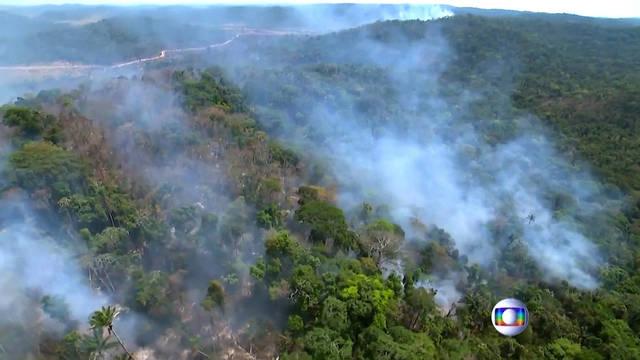 H1 amazon brazil wildfire fires smoke prayforamazonia sao paulo deforestation jair bolsonaro climate change rainforeset