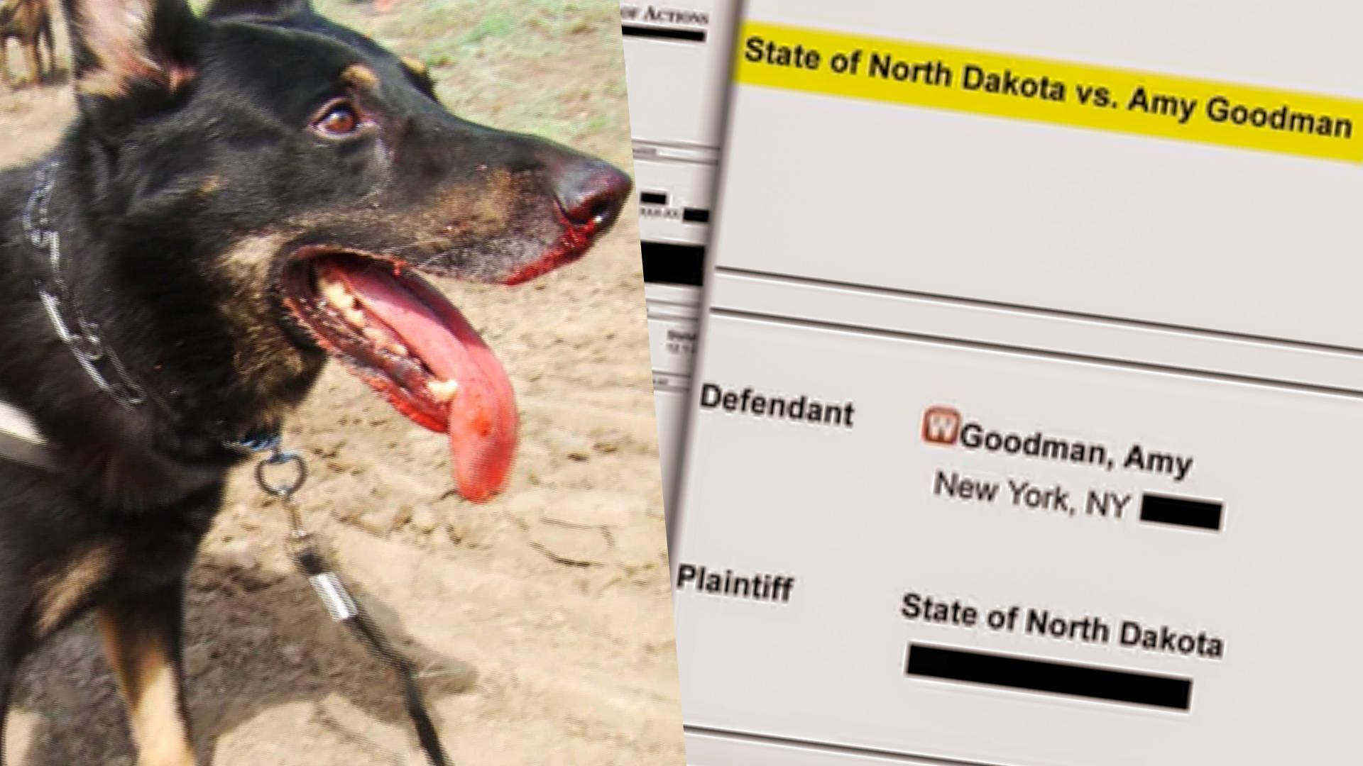 MEDIA ADVISORY: Journalist Amy Goodman to Turn Herself in to North Dakota Authorities