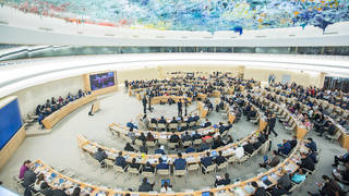 S un human rights council
