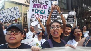 Daca announcement protest nyc