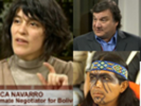 Navarro democracynow copia