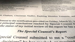 H1 special counsels report