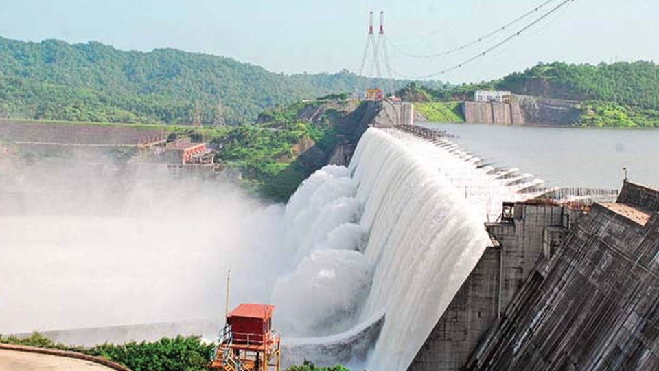 H13 india dam