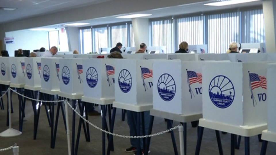 H10 texas voting