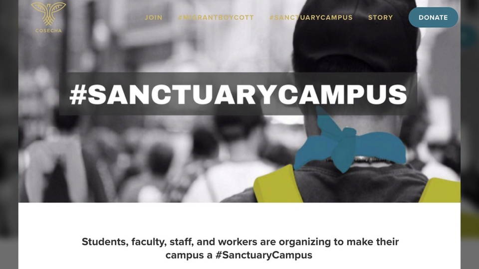 H02 sanctuary campuses