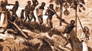 H11 house judiciary slavery reparations hearing