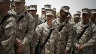 H11 marines