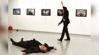 H8 turkey assassination