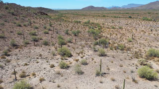 H5 no more deaths border angels people helping people border zone human remains found us mexico border arizona desert migrants