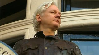 H14 assange extradition