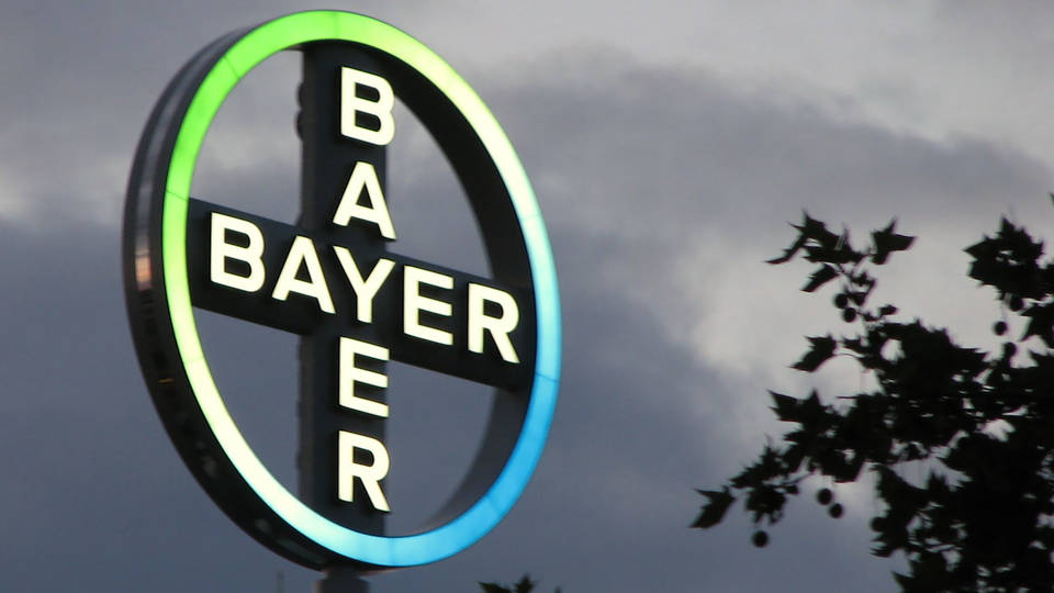 H12 monsanto bayer takeover