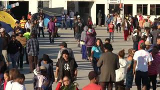H6 migrants tijuana caravan