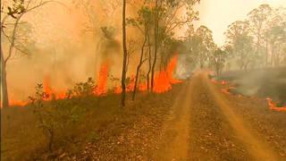 H10 sydney australia shrouded smoke unprecedented wildfire rage victoria queensland states