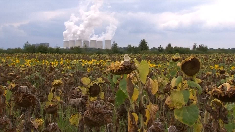 H9 germany to end coal use