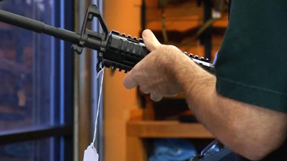 H8 gun bill