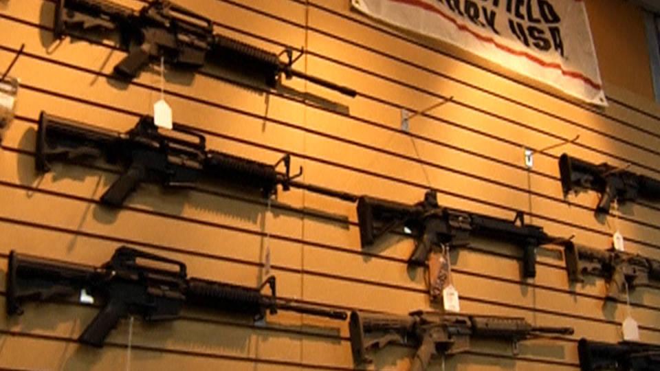 H10 gun control