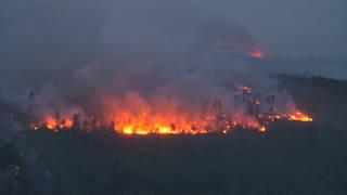 Hl 4 wildfires