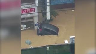 H02 typhoon chaba