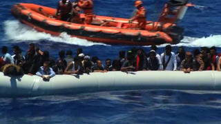 H10 migrants