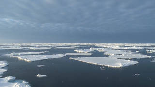 H9 study 2019 hottest year for worlds oceans on record