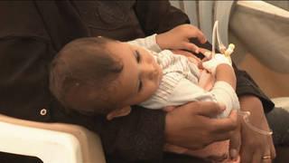 H7 yemen cholera