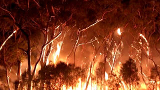 H8 australia wildfires new south wales victoria
