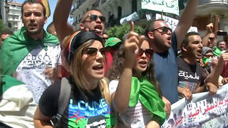 H8 alergia protests government