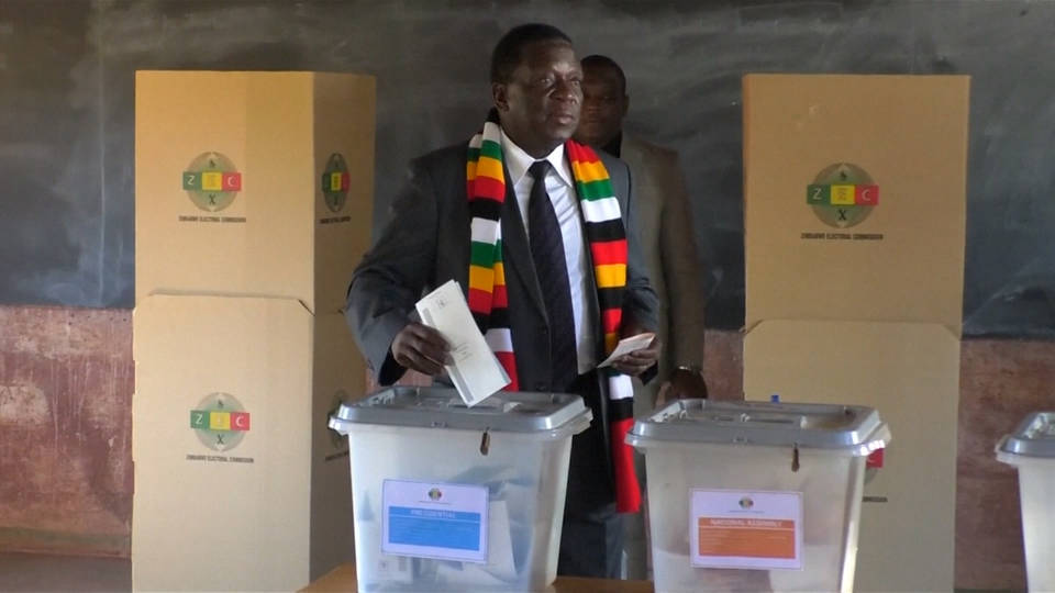 H6 zimbabwe election
