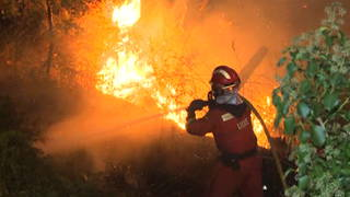 h11 spain fire