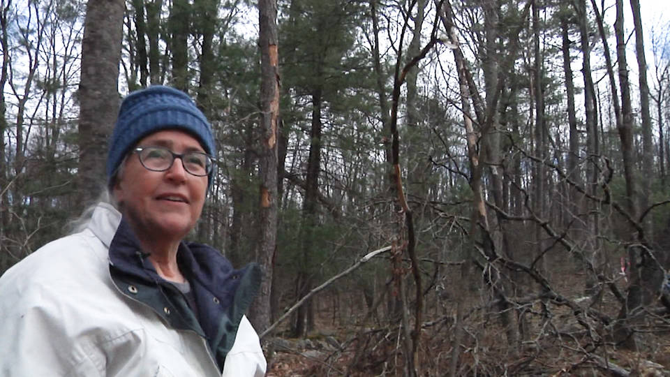 H10 pa grandmother arrested for resisting pipeline on own land