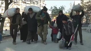 H05 turkey displaced