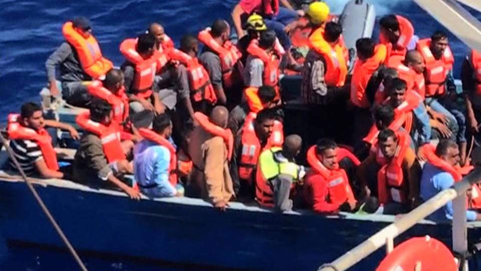 H05 migrants