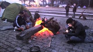 Hdlns6 refugees