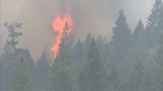 H3 forestfire