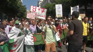 H7 algeria