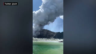 H9 new zealand volcano eruption white island dead missing