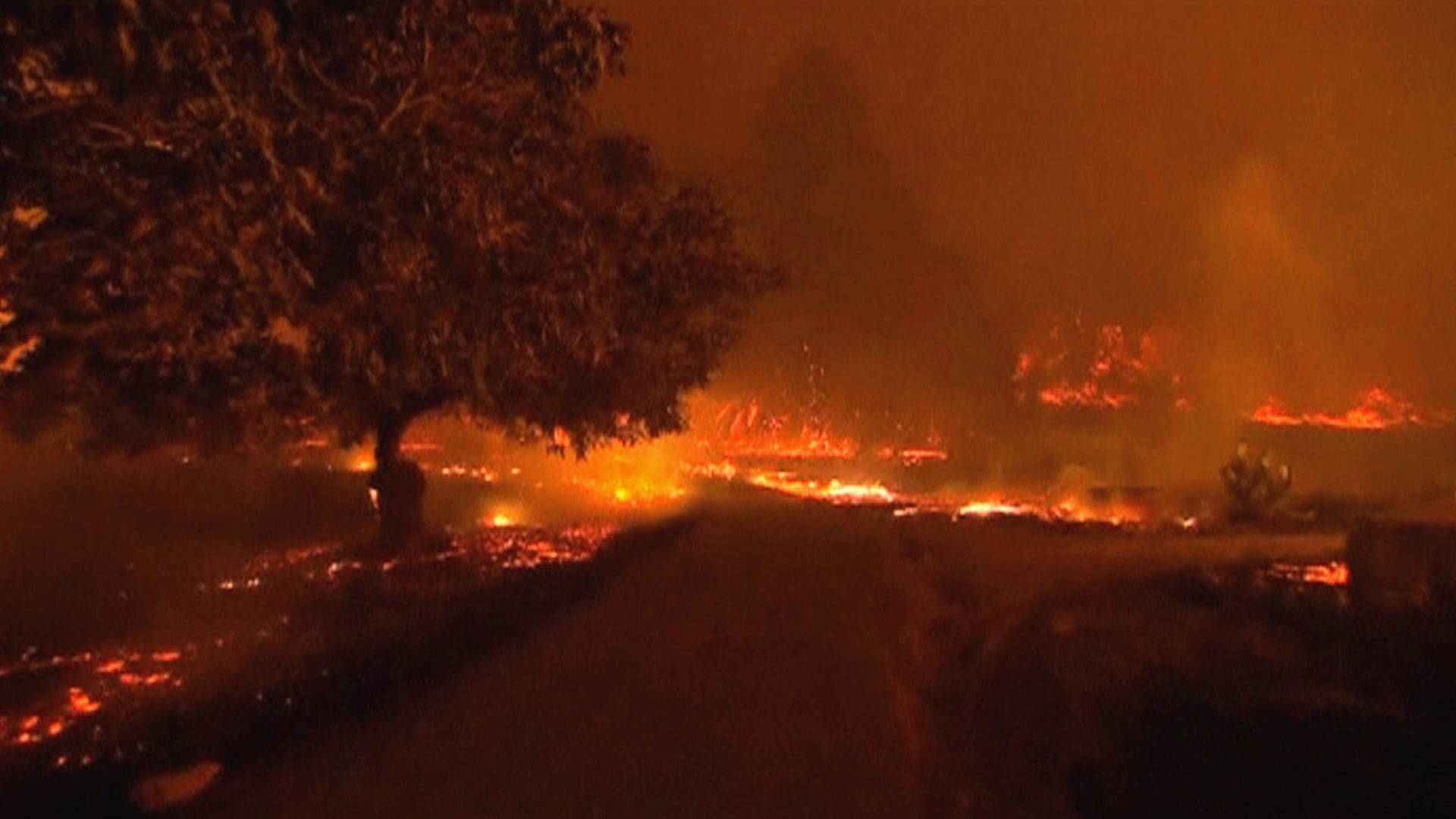 california  death toll from wildfire hits 17  blocks
