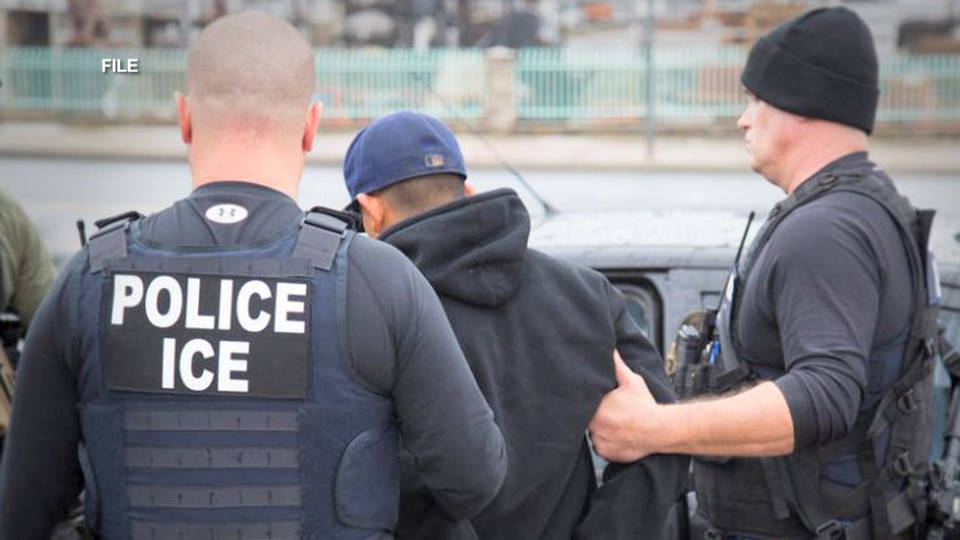 H5 tennessee ice raids