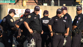 Hdls8 nypd
