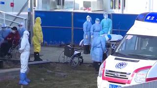 H2 coronavirus deaths china tianjin hong kong