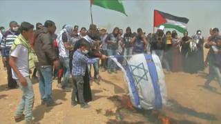 H7 gaza flag