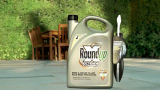 H12 california oakland rounup monsanto bayer cancer lawsuit