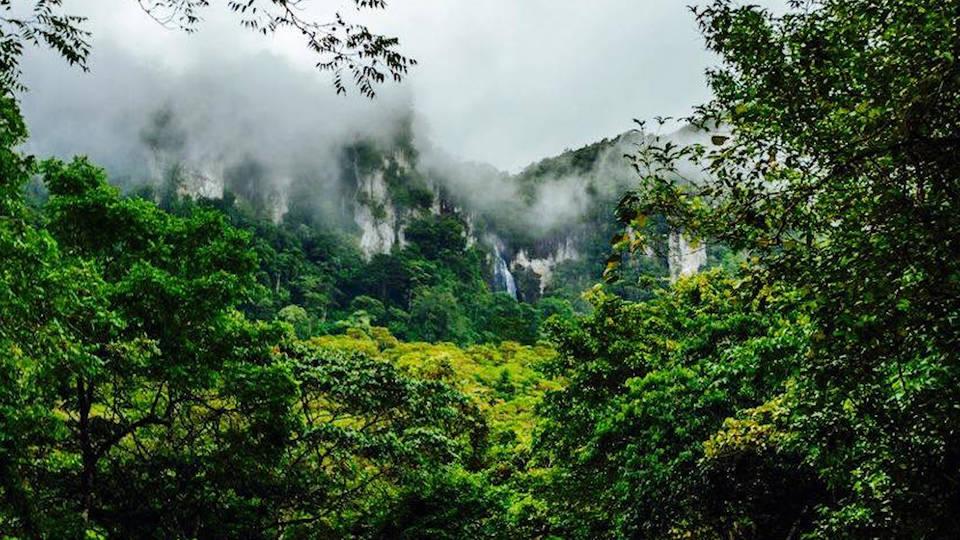H9 6 indigenous leaders killed nicaragua biosphere raid