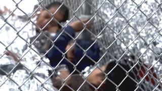 H4 family separation